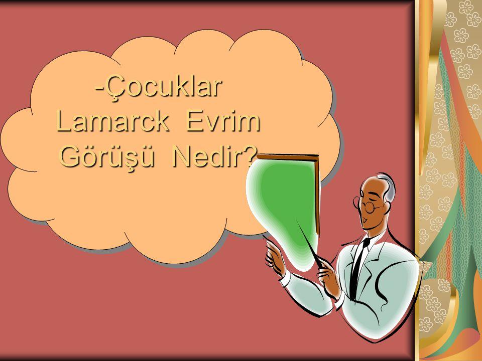 -Çocuklar Lamarck Evrim Görüşü Nedir? -Çocuklar Lamarck Evrim Görüşü Nedir?