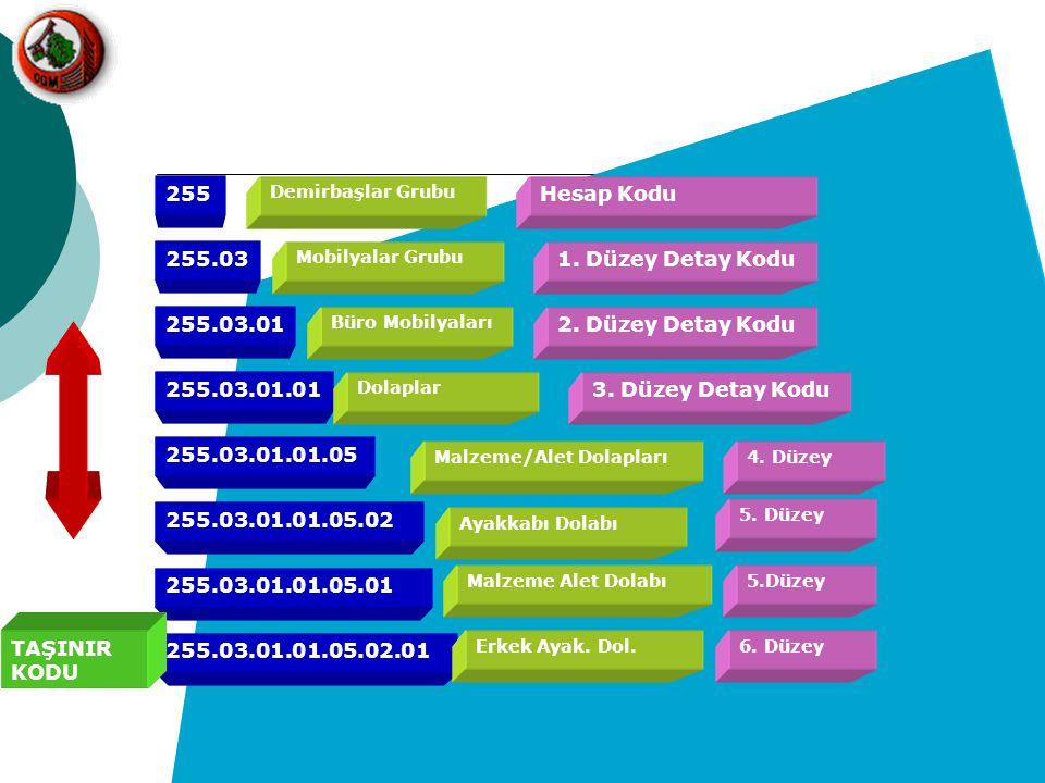255 Demirbaşlar Grubu Hesap Kodu 255.03 Mobilyalar Grubu 1. Düzey Detay Kodu 255.03.01 Büro Mobilyaları 2. Düzey Detay Kodu 255.03.01.01 Dolaplar 3. D