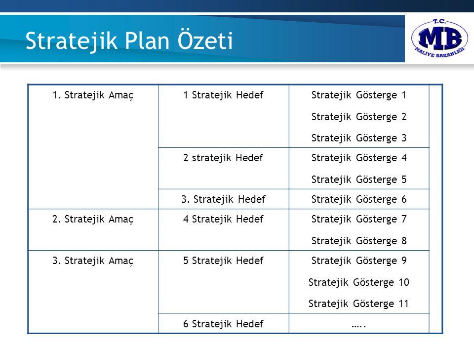 Stratejik Plan Özeti. 1.