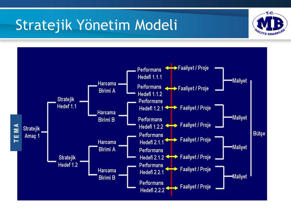 Stratejik Yönetim Modeli. T E M A