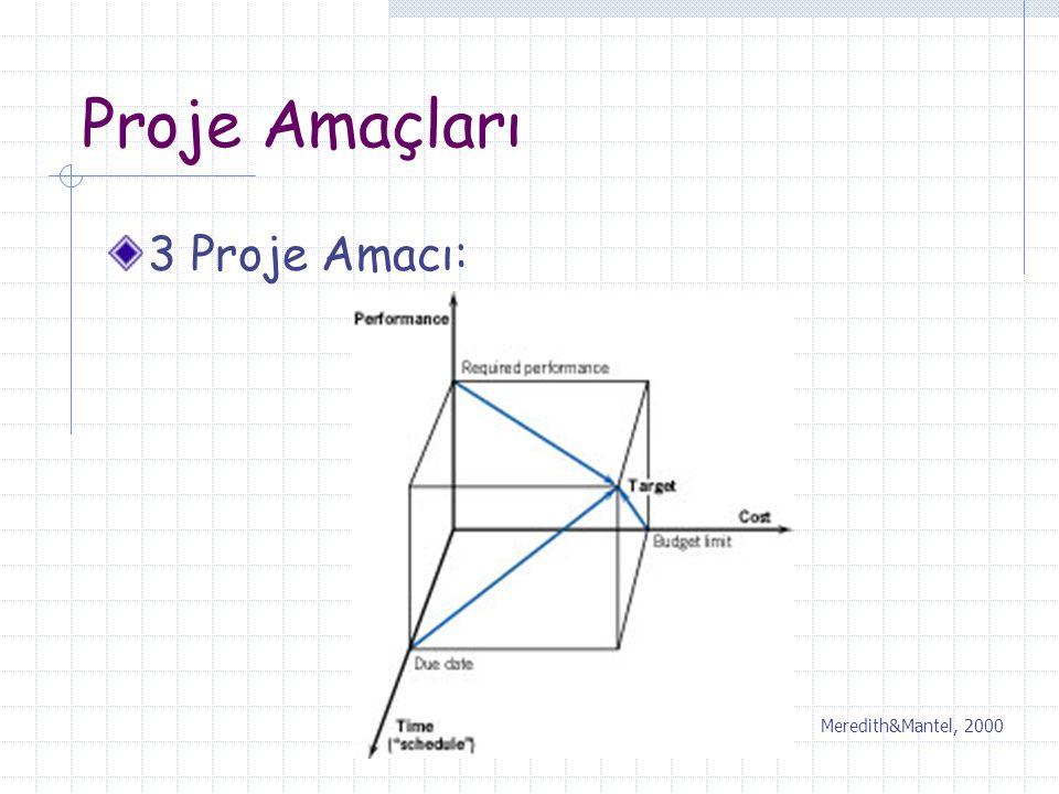 Proje Amaçları 3 Proje Amacı: Meredith&Mantel, 2000