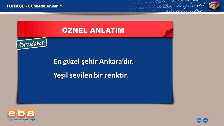 3 ÖZNEL ANLATIM En güzel şehir Ankara'dır. Yeşil sevilen bir renktir. Ö r n e k l e r TÜRKÇE / Cümlede Anlam 1