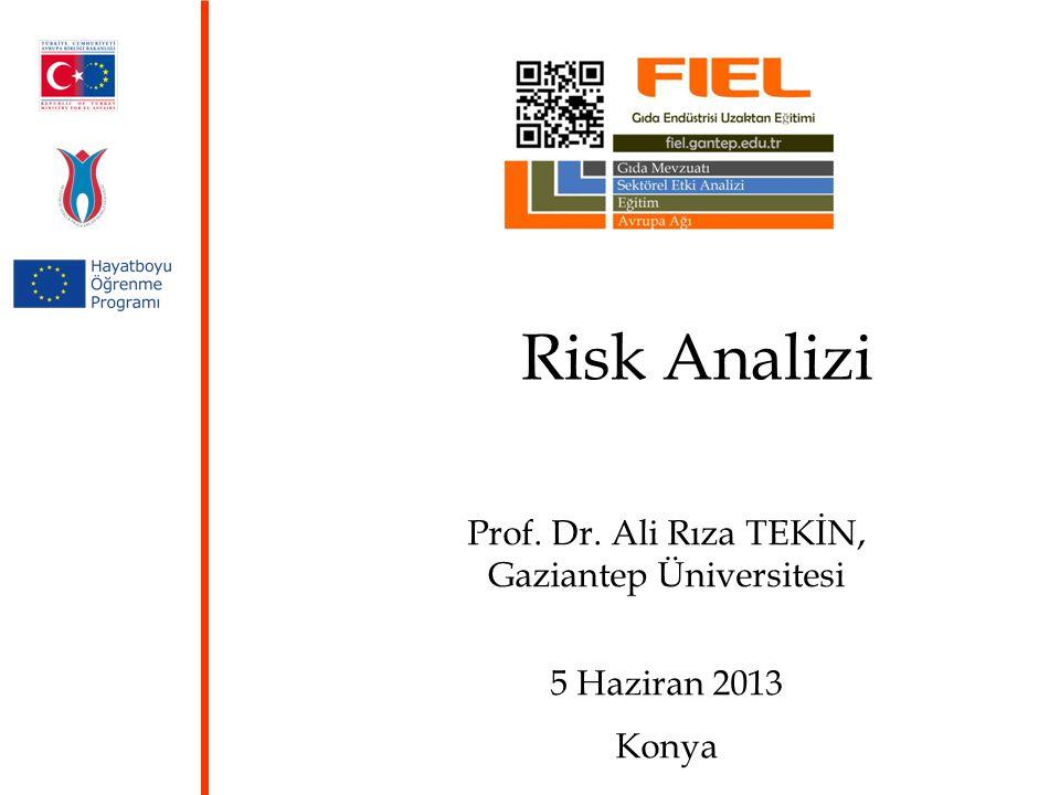 Risk Analizi Prof. Dr. Ali Rıza TEKİN, Gaziantep Üniversitesi 5 Haziran 2013 Konya