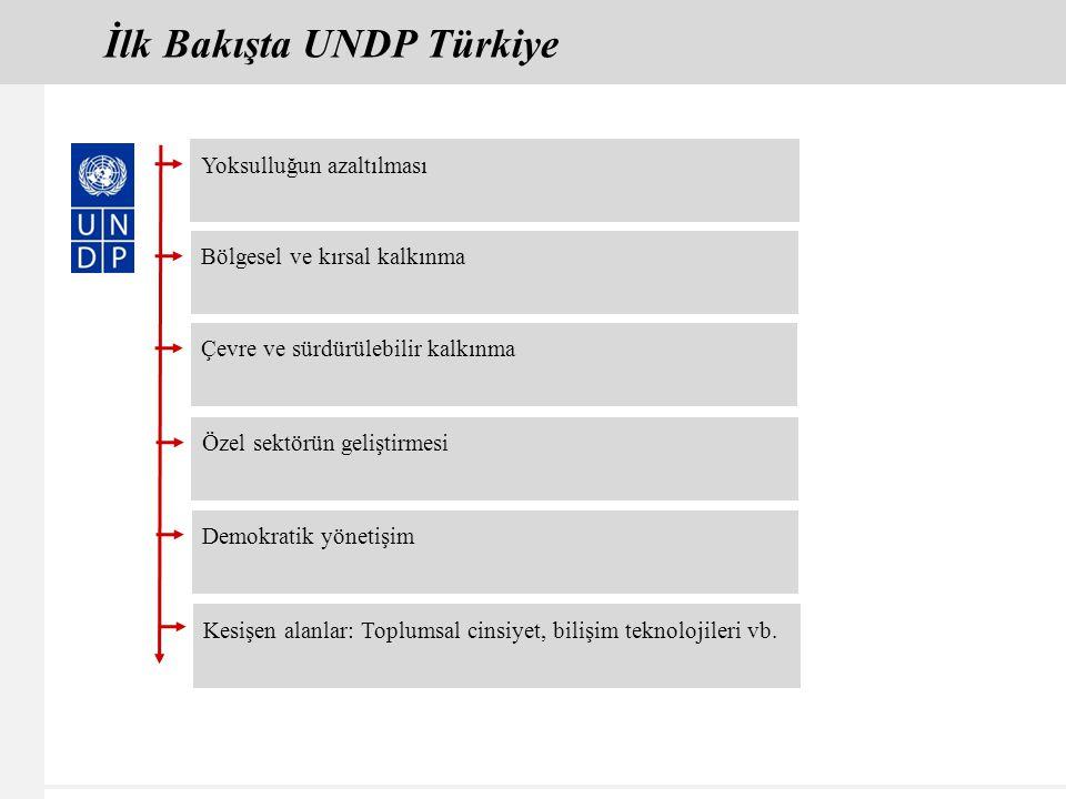 İlk Bakışta UNDP Türkiye Yoksulluğun azaltılması Bölgesel ve kırsal kalkınma Çevre ve sürdürülebilir kalkınma Özel sektörün geliştirmesi Demokratik yönetişim Kesişen alanlar: Toplumsal cinsiyet, bilişim teknolojileri vb.