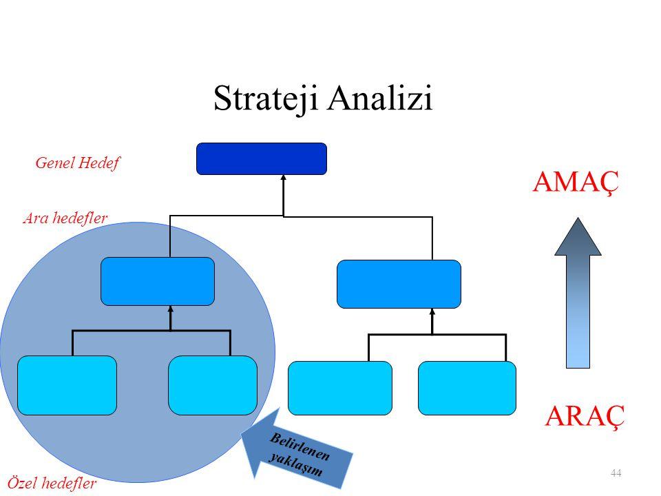 Strateji Analizi ARAÇ AMAÇ Özel hedefler Ara hedefler Genel Hedef Belirlenen yaklaşım 44
