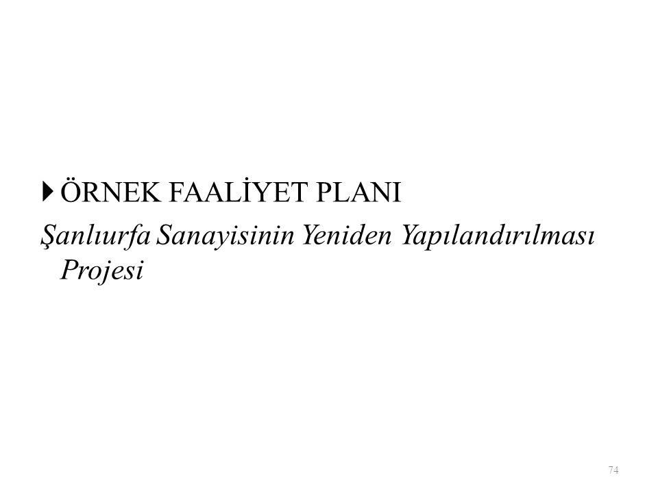  ÖRNEK FAALİYET PLANI Şanlıurfa Sanayisinin Yeniden Yapılandırılması Projesi 74