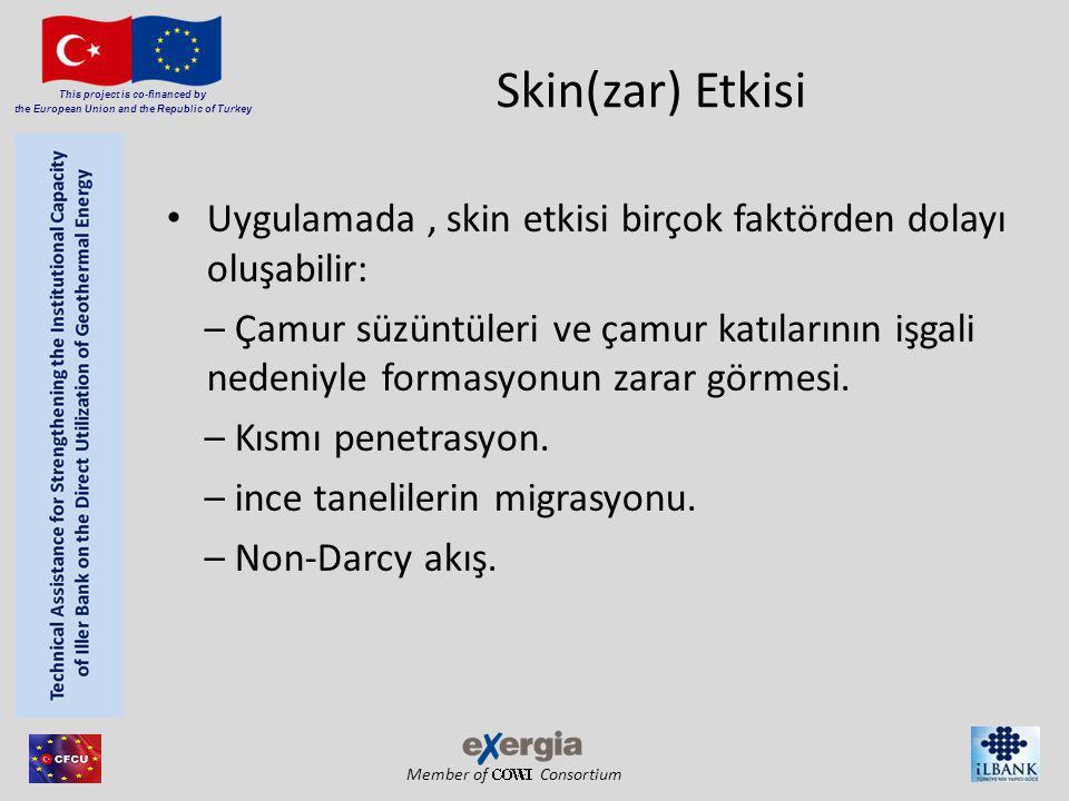 Member of Consortium This project is co-financed by the European Union and the Republic of Turkey Skin(zar) Etkisi Uygulamada, skin etkisi birçok fakt
