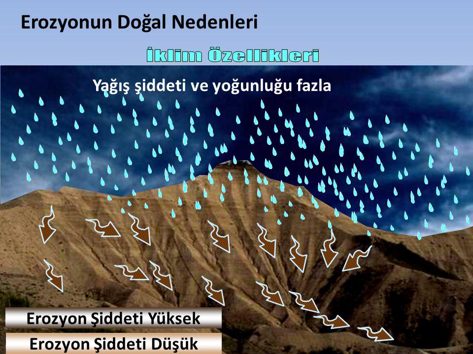 Yağış şiddeti ve yoğunluğu az Erozyonun Doğal Nedenleri Yağış şiddeti ve yoğunluğu fazla Erozyon Şiddeti Yüksek Erozyon Şiddeti Düşük