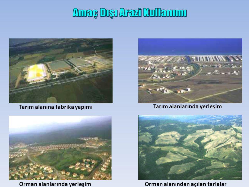 Tarım alanına fabrika yapımı Tarım alanlarında yerleşim Orman alanlarında yerleşimOrman alanından açılan tarlalar