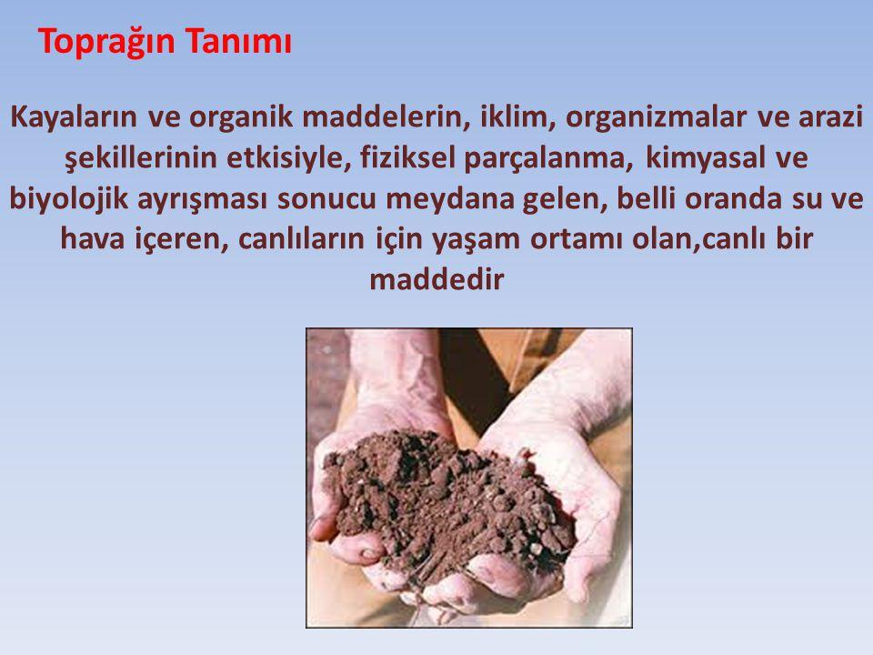 Toprağın Tanımı Kayaların ve organik maddelerin, iklim, organizmalar ve arazi şekillerinin etkisiyle, fiziksel parçalanma, kimyasal ve biyolojik ayrış