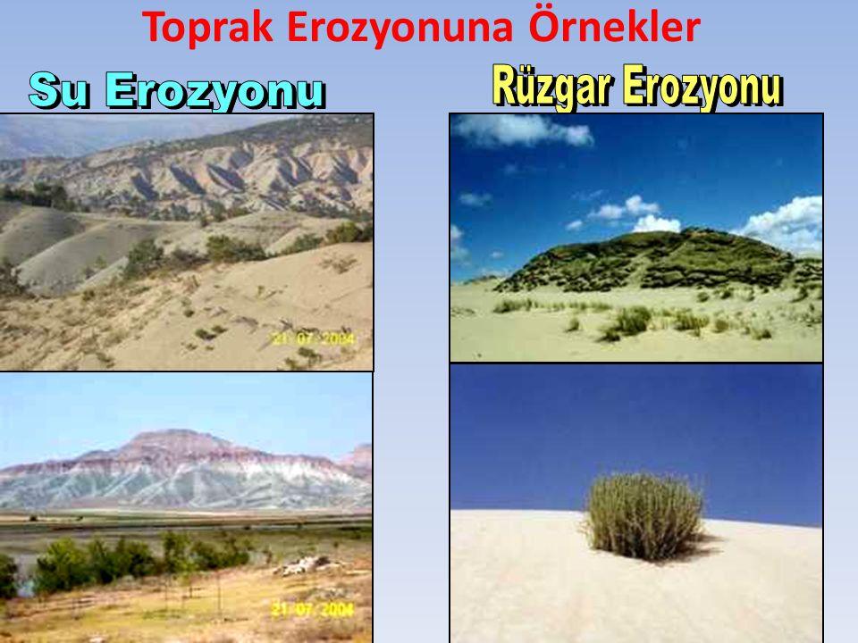 Toprak Erozyonuna Örnekler