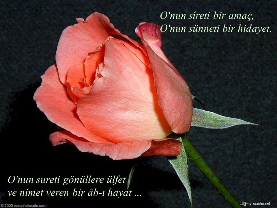 O'nun sîreti bir amaç, O'nun sünneti bir hidayet, O'nun sureti gönüllere ülfet ve nimet veren bir âb-ı hayat...