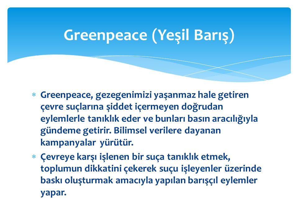  Greenpeace, gezegenimizi yaşanmaz hale getiren çevre suçlarına şiddet içermeyen doğrudan eylemlerle tanıklık eder ve bunları basın aracılığıyla günd