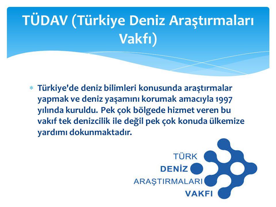  Türkiye'de deniz bilimleri konusunda araştırmalar yapmak ve deniz yaşamını korumak amacıyla 1997 yılında kuruldu. Pek çok bölgede hizmet veren bu va
