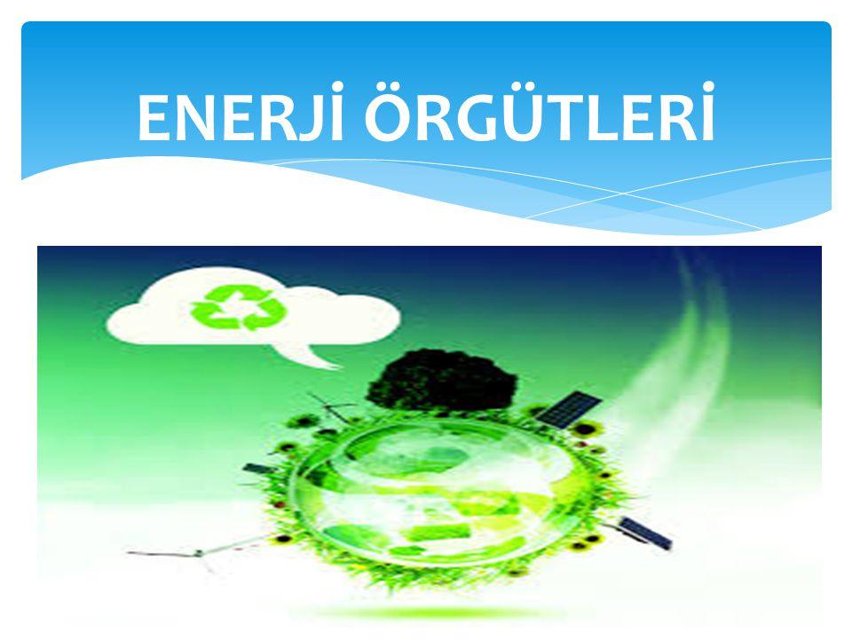 ENERJİ ÖRGÜTLERİ