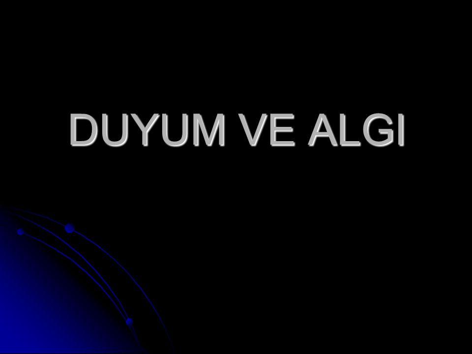 Öğr. Gör. Serap GÖKCE Ahmet Erdoğan Sağlık Hizmetleri Meslek Yüksekokulu