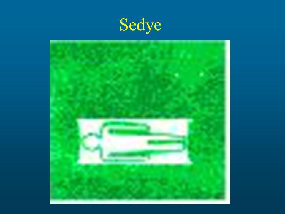 Sedye