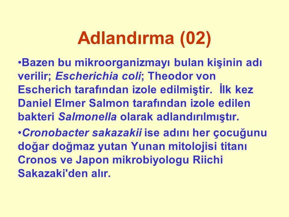 Adlandırma (03) Salmonella cinsinde adlandırma farklıdır ve türler değil serotipler önemlidir.