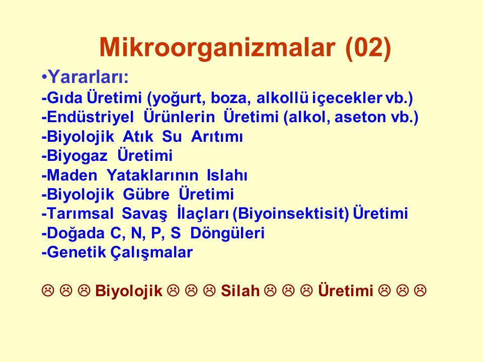 Mikroorganizmalar (03) Zararları: -İnsanları, hayvanları, bitkileri hastalandırır.