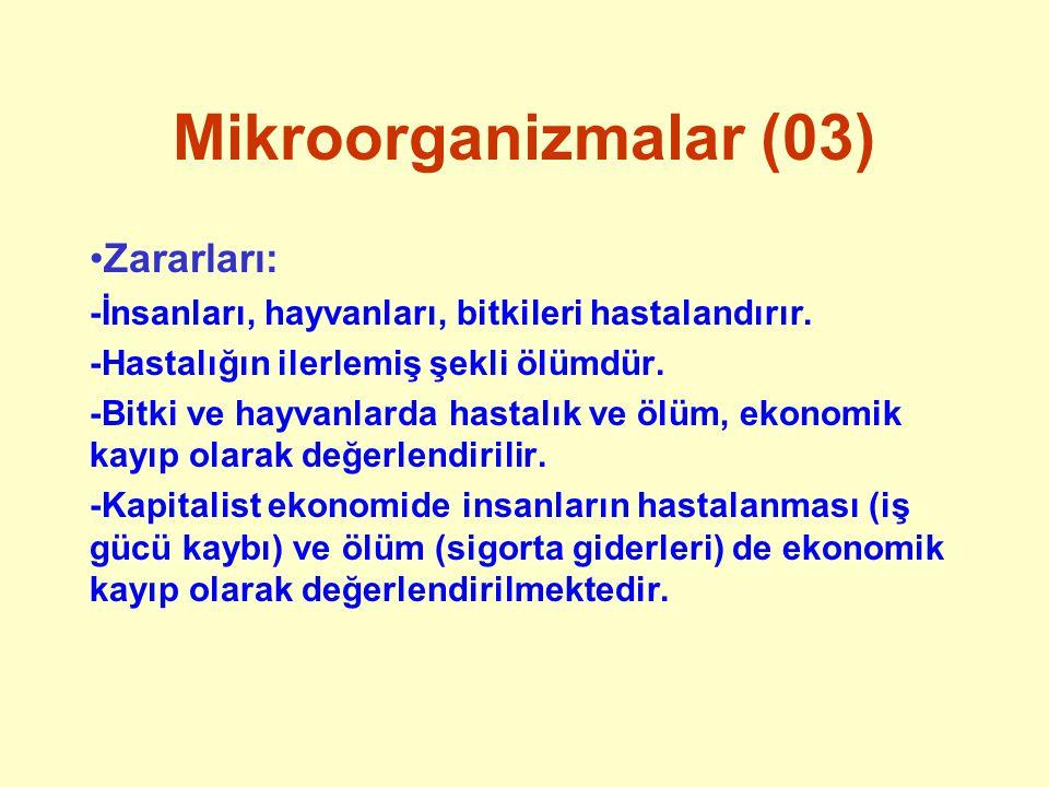 Sınıflandırma (01) Önce 2 âlem (bitkiler ve hayvanlar), sonra 3 âlem (bitkiler, hayvanlar ve protista), bugün 5 âlem sistemi geçerlidir.