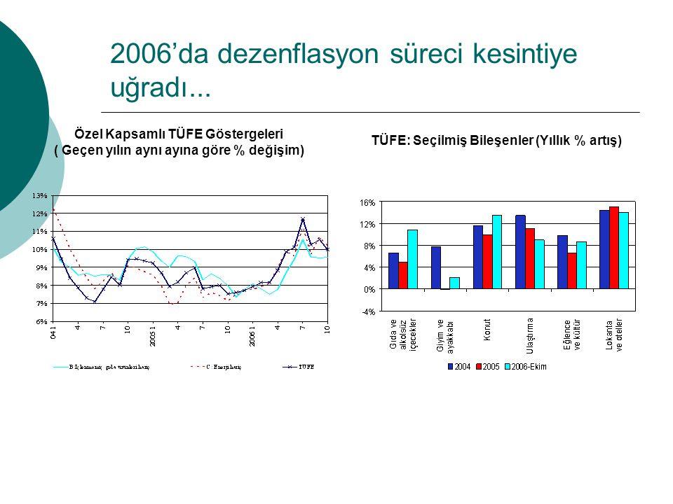2006'da dezenflasyon süreci kesintiye uğradı...