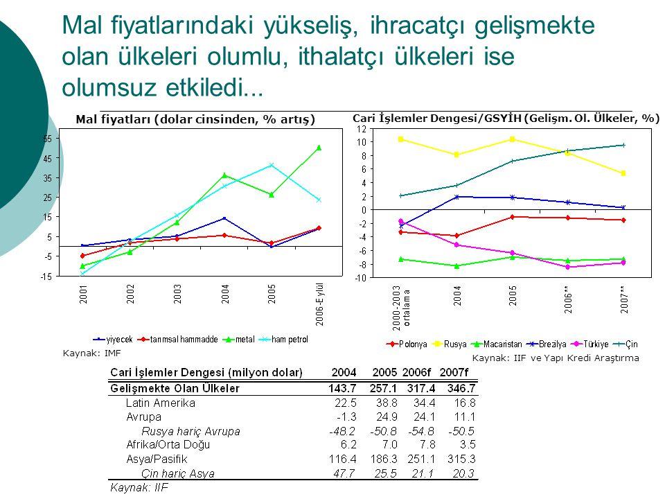 Gelişmekte olan ülkelere sermaye akımları 2006 yılında hız kesti, ancak doğrudan yatırımlarda artış oldu...