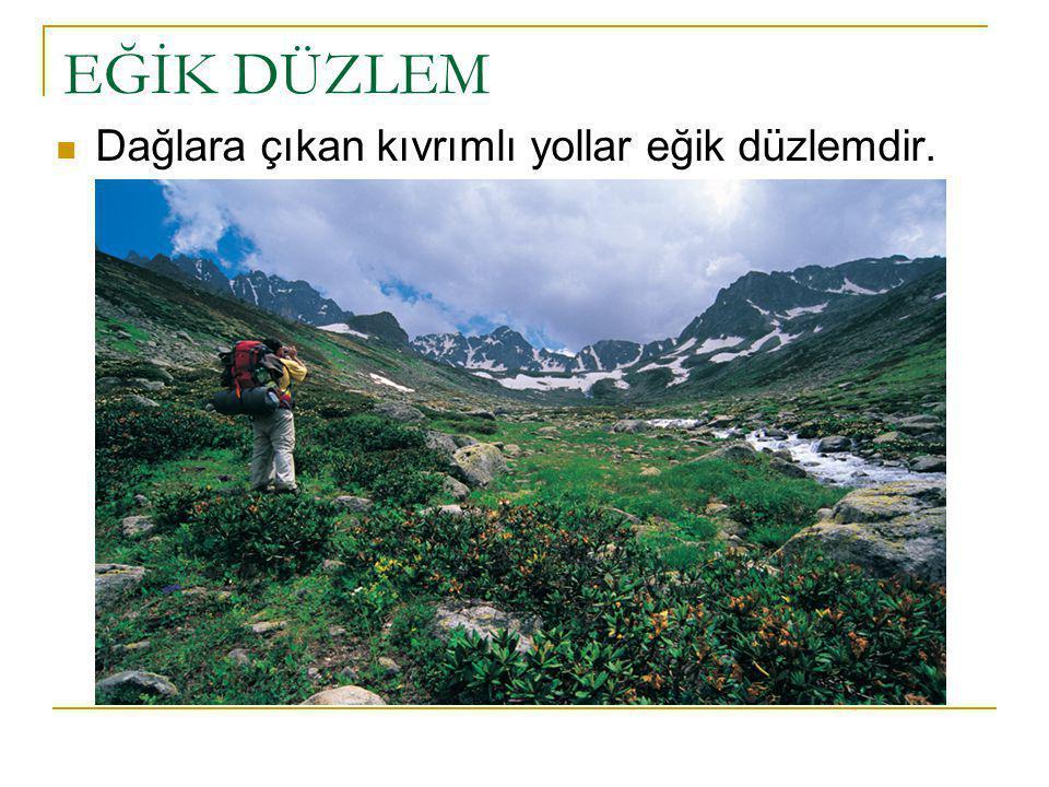 EĞİK DÜZLEM Dağlara çıkan kıvrımlı yollar eğik düzlemdir.