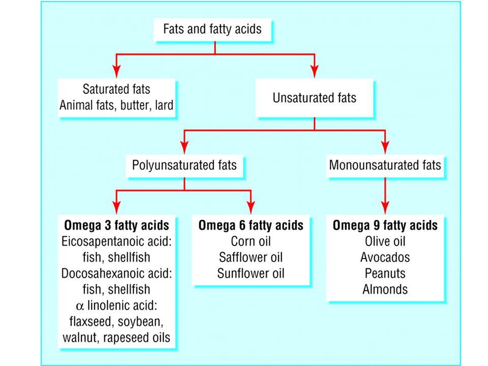 Yağ asitlerinde zincir uzunluğu Karbon (C) uzunluğuna göre: Kısa zincirli yağ asitleri (2-4 C) Orta zincirli yağ asitleri (6-10 C) Uzun yağ asitleri (12-28 C) - Yağ asitlerinin karbon uzunluğu beslenmede önem taşır.