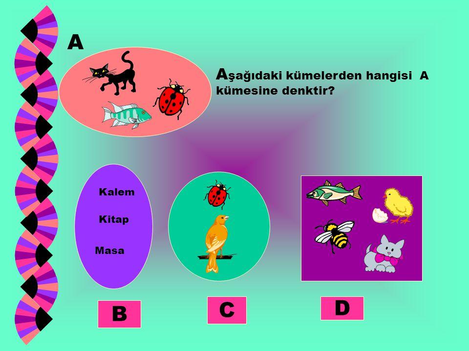 A şağıdaki kümelerden hangisi A kümesine denktir? A B C D Kalem Kitap Masa