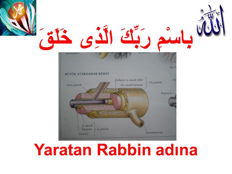 بِاسْمِ رَبِّكَ الَّذِى خَلَقَ Yaratan Rabbin adına
