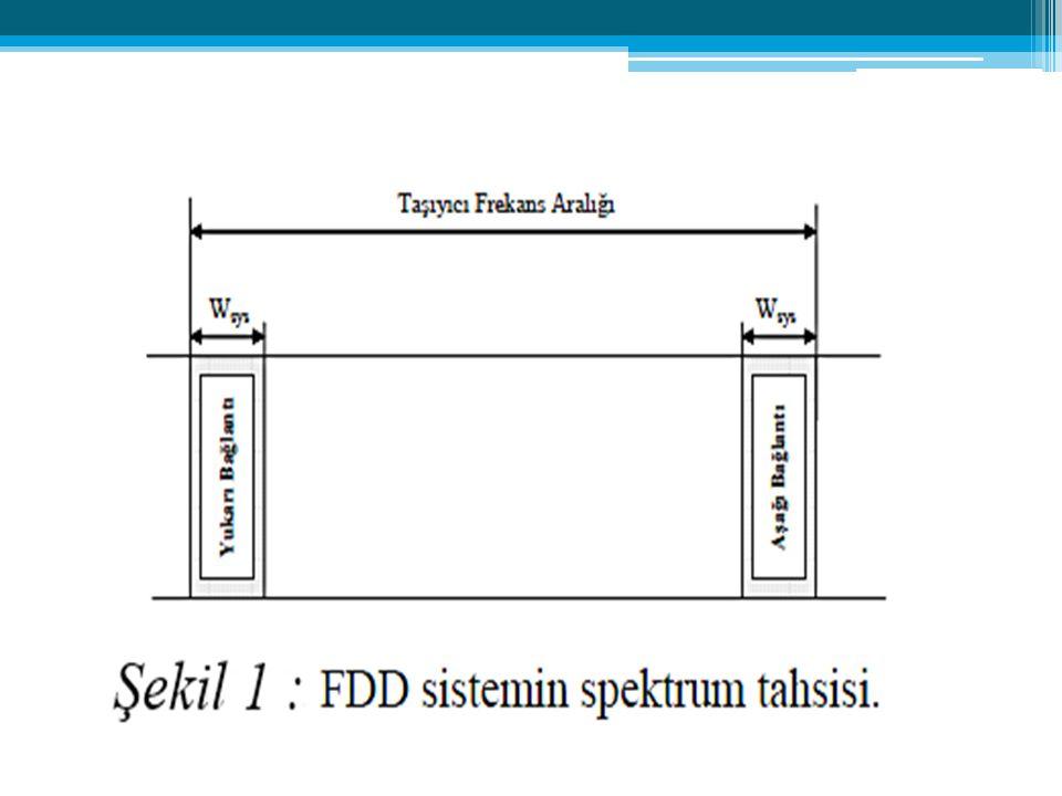 Frekanslara ayrılmış sinyal sınıfına giren çoğullama tipidir.Bu çeşit çoğullamada birden fazla sinyaller birleştirilip tek bir kanal veya telekomünikasyon hattı üzerinden gönderilir.Her sinyale, ana kanal üzerinde değişik bir frekans verilir.(subchannel) Evlerde veya ofislerde kurulan network ağları FDM (Frekans Bölmeli Çoğullama) tipi çoğullama kullanılarak aynı kablo üzerinde değişik servislerin kullanılmasına yardımcı olur.