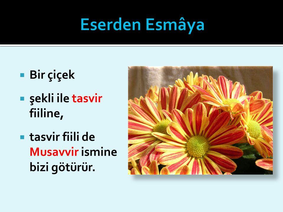  Bir çiçek  şekli ile tasvir fiiline,  tasvir fiili de Musavvir ismine bizi götürür.