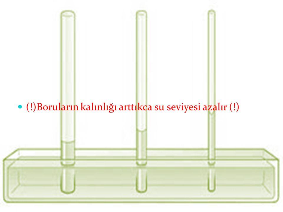 Silindirik bir boruda bir sıvının ne kadar yükseleceği ya da alçalacağı sıvının yüzey gerilim kat sayısı ile doğru orantılı: sıvının yoğunluğu, yerçek