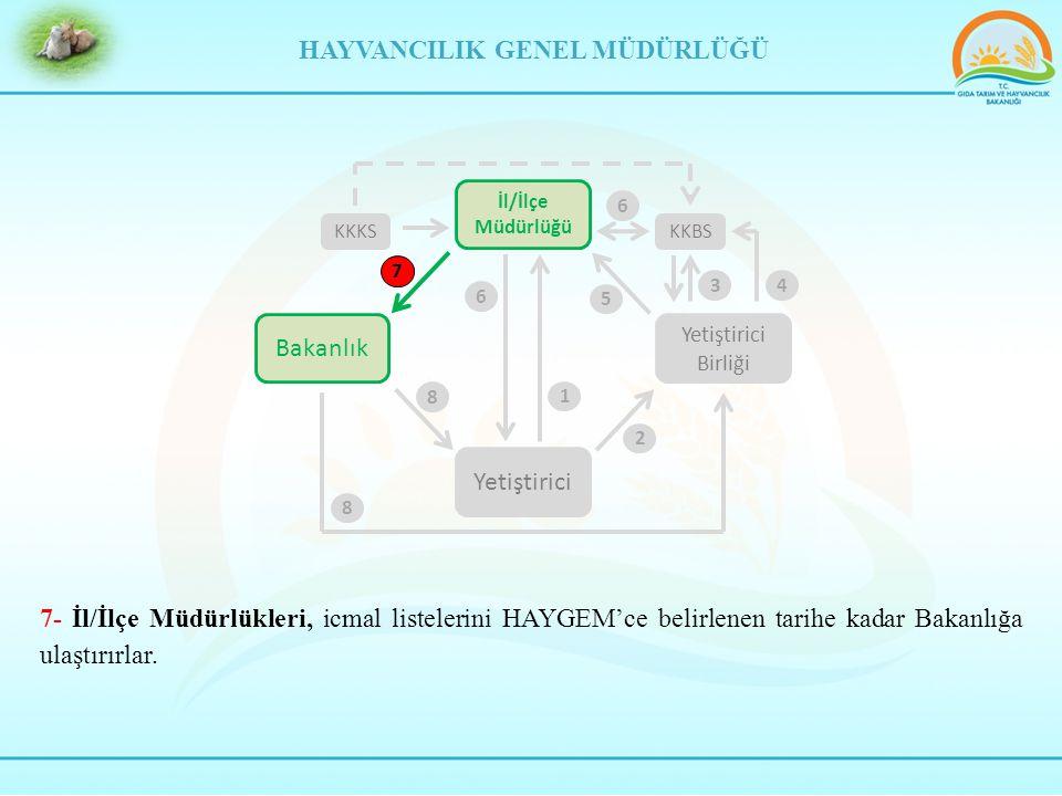 7- İl/İlçe Müdürlükleri, icmal listelerini HAYGEM'ce belirlenen tarihe kadar Bakanlığa ulaştırırlar.