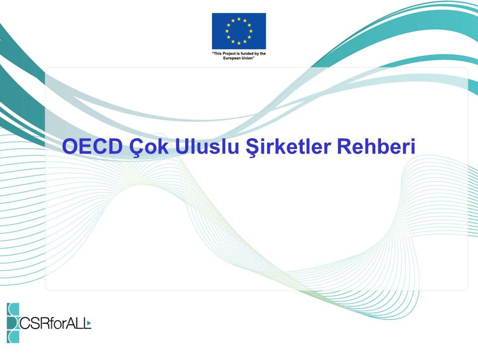 OECD Çok Uluslu Şirketler Rehberi Nedir.Devletlerin işletmelere tavsiyelerine yer verir.