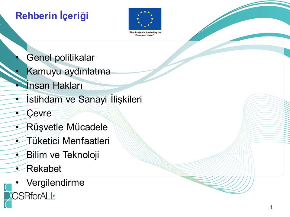 Rehberin İçeriği Genel politikalar Kamuyu aydınlatma İnsan Hakları İstihdam ve Sanayi İlişkileri Çevre Rüşvetle Mücadele Tüketici Menfaatleri Bilim ve