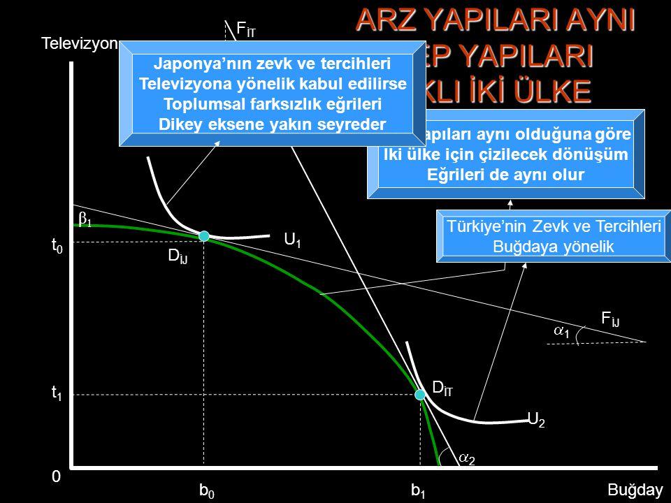 D ÜT β3β3 D İJ 33 D İT 11 β1β1 ARZ YAPILARI FARKLI TALEP YAPILARI AYNI İKİ ÜLKE Televizyon Buğday F İT FUFU β2β2 D ÜJ 22 0b1b1 b2b2 U1U1 b3b3 b4