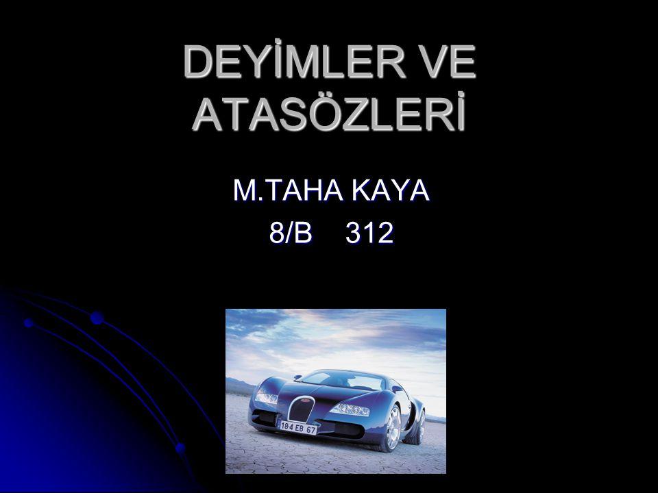 DEYİMLER VE ATASÖZLERİ M.TAHA KAYA 8/B 312