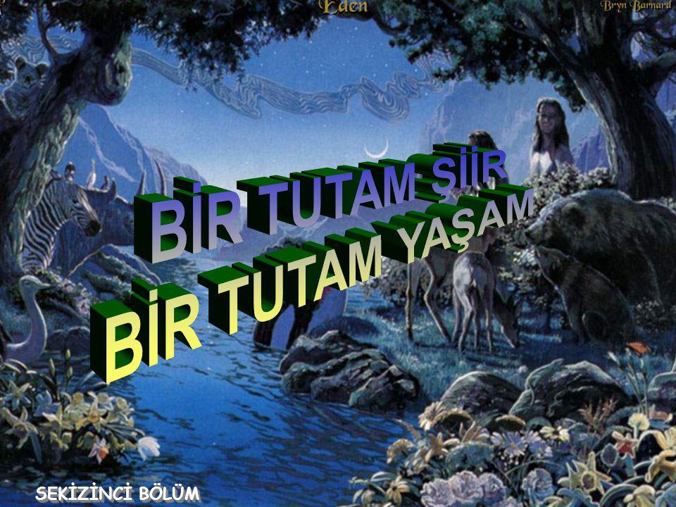 Mustafa Süreyya Sezgin Mustafa Süreyya Sezgin