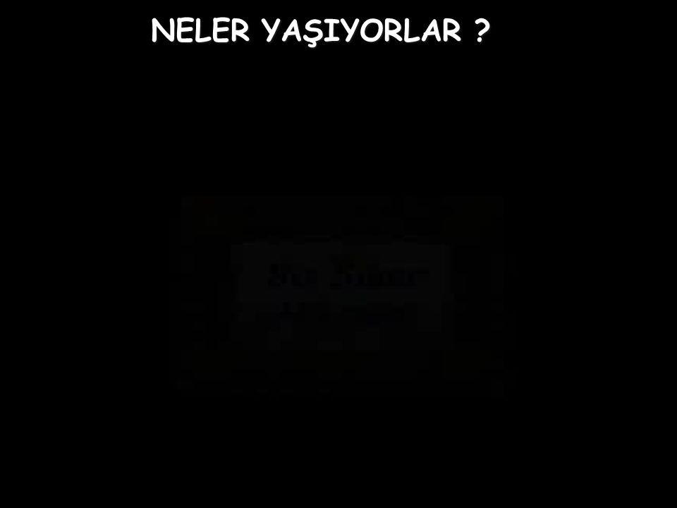 Yasemin AY & Seda ALTINKAYA & Ufuk VURDUM