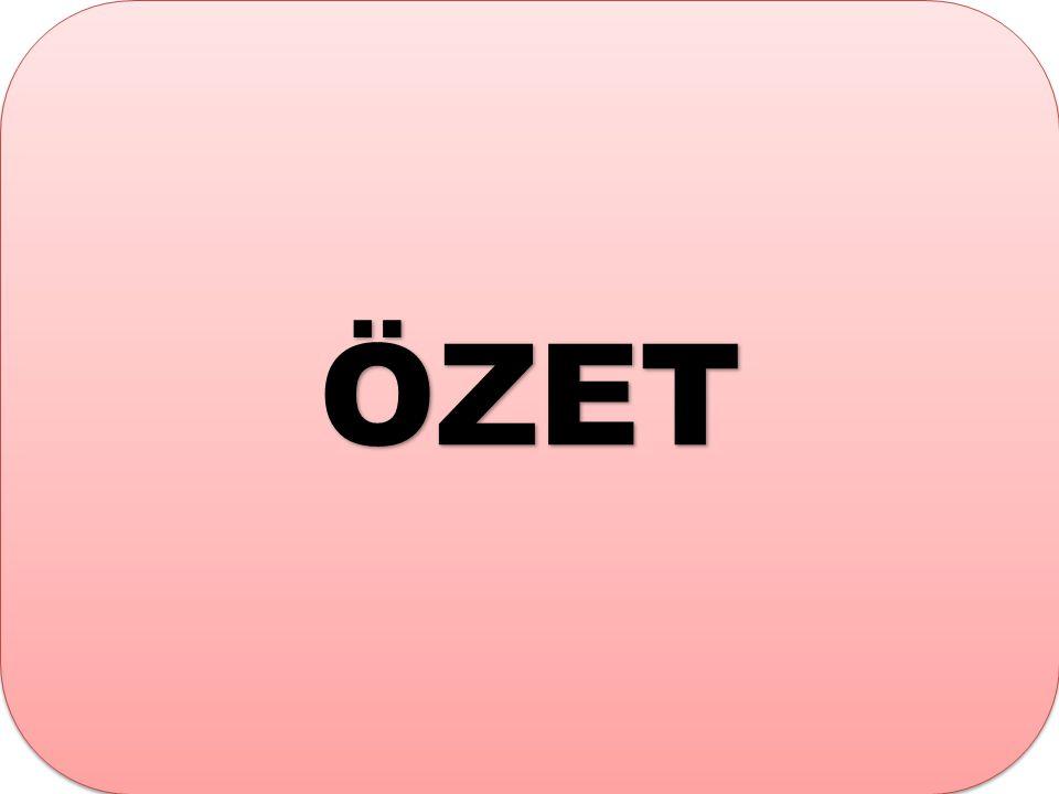 ÖZETÖZET