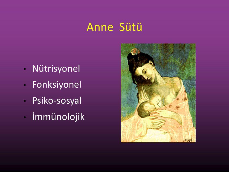 Anne Sütü Nütrisyonel Fonksiyonel Psiko-sosyal İmmünolojik