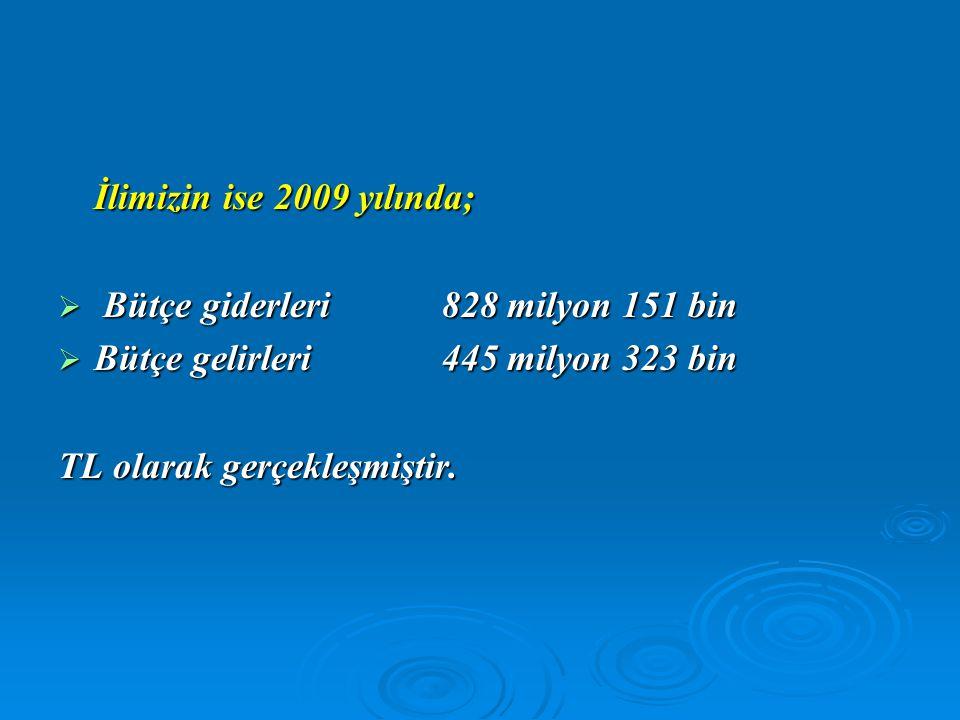 İlimizin ise 2009 yılında;  Bütçe giderleri 828 milyon 151 bin  Bütçe gelirleri445 milyon 323 bin TL olarak gerçekleşmiştir.