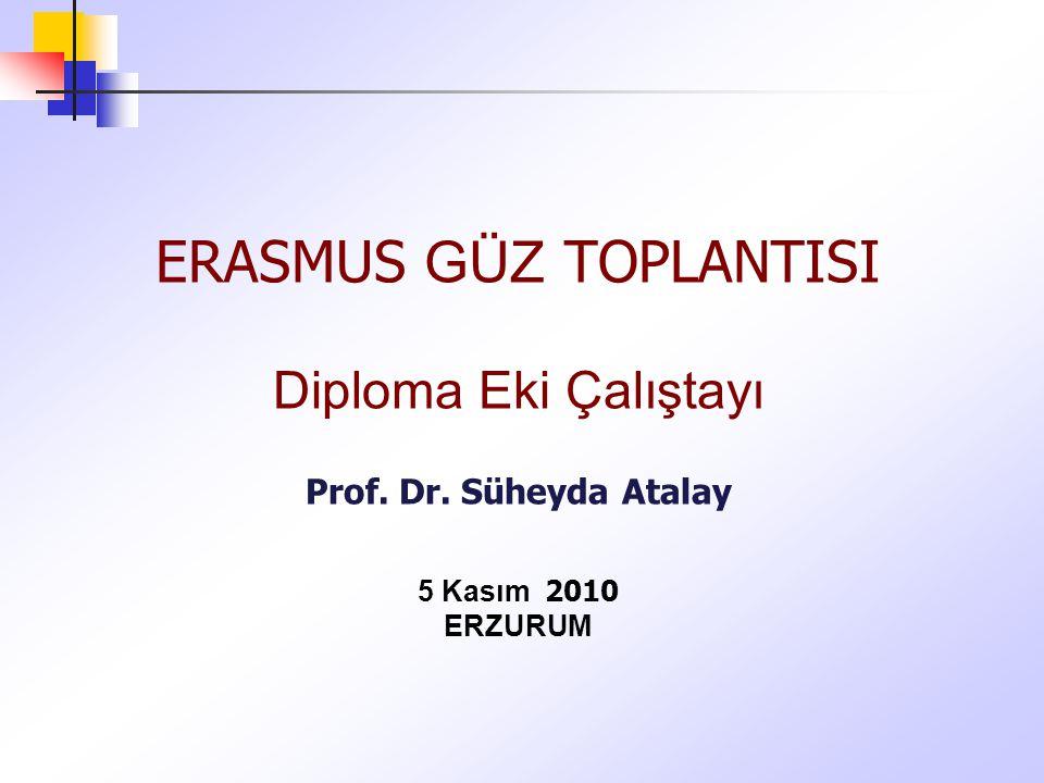 ERASMUS GÜZ TOPLANTISI Diploma Eki Çalıştayı Prof. Dr. Süheyda Atalay 5 Kasım 2010 ERZURUM