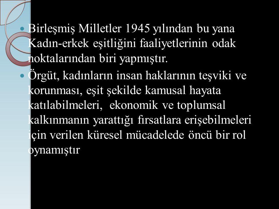 Türk Ceza Kanunu'nun 2005'te değiştirilmesiyle cinsel suçların toplumsal düzen ve genel ahlâka karşı suçlar olmaktan çıkarılıp, kişiye karşı işlenen suçlar olarak kabul edilmesi de kadınlar açısından çok önemli farklar yaratacak bir bakış açısı değişikliğine işaret etmektedir.