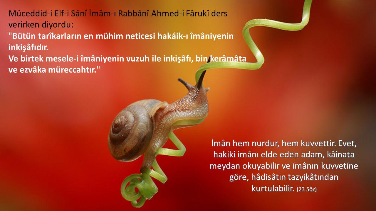 Müceddid-i Elf-i Sânî İmâm-ı Rabbânî Ahmed-i Fârukî ders verirken diyordu: