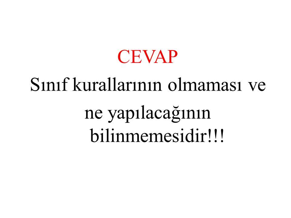 CEVAP Sınıf kurallarının olmaması ve ne yapılacağının bilinmemesidir!!!