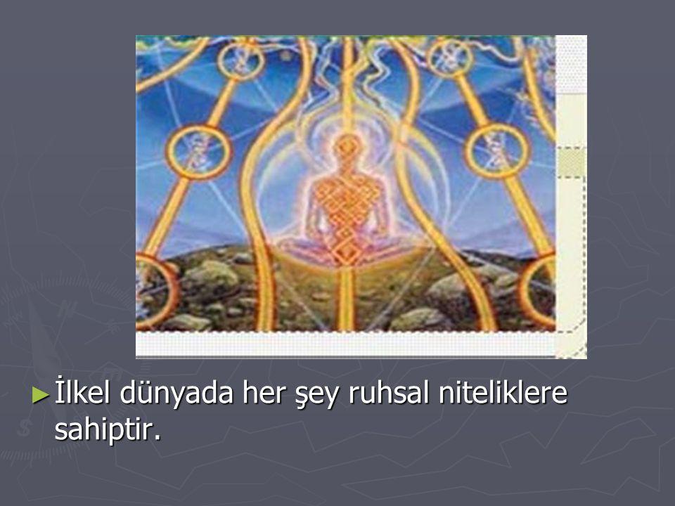 ► İlkel dünyada her şey ruhsal niteliklere sahiptir.