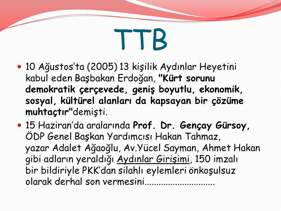 TTB 10 Ağustos'ta (2005) 13 kişilik Aydınlar Heyetini kabul eden Başbakan Erdoğan, Kürt sorunu demokratik çerçevede, geniş boyutlu, ekonomik, sosyal, kültürel alanları da kapsayan bir çözüme muhtaçtır demişti.