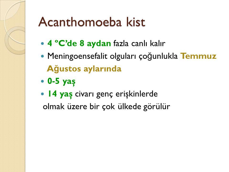 Acanthomoeba kist 4 ºC'de 8 aydan fazla canlı kalır Meningoensefalit olguları ço ğ unlukla Temmuz A ğ ustos aylarında 0-5 yaş 14 yaş civarı genç erişk